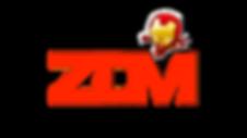 Escuela triatlon leganes Zona De Meta ZD