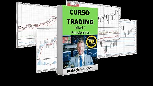 NIVEL 1 VIP Curso Trading Principiante o