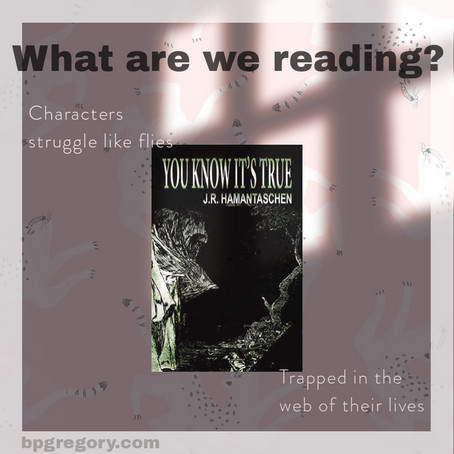 What Are We Reading?: You Know It's True, by JR Hamantaschen