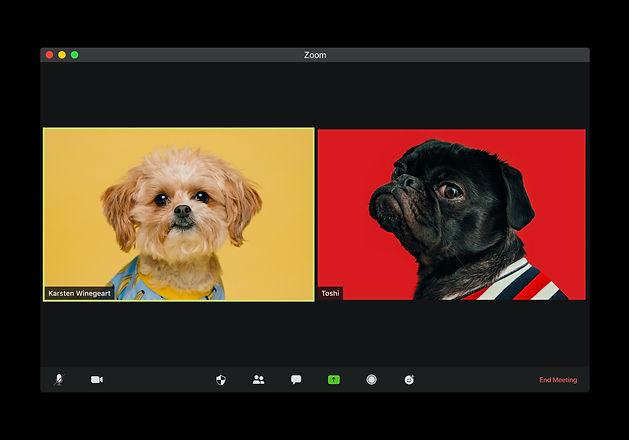 visuals-sW_BS0OVgv0-unsplash.jpg