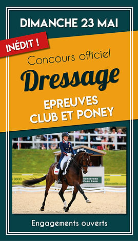Story Concours dressage.jpg