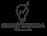 Logo Sodré Teixeira