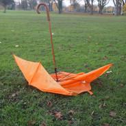 Umbrella Llandaf Fields