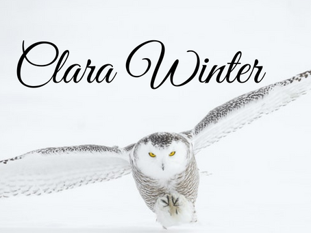 Interview with Clara Winter