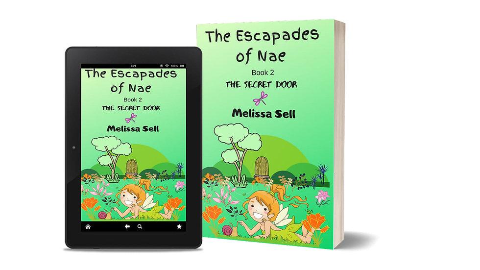 The Escapades of Nae, The Secret Door