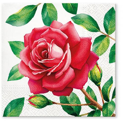 Rose Flower - Decoupage Napkin