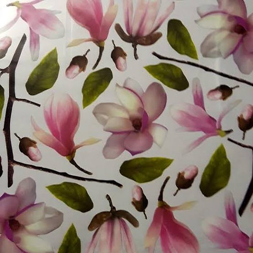 Sospeso Trasparente - Printed Film Branch Magnolia