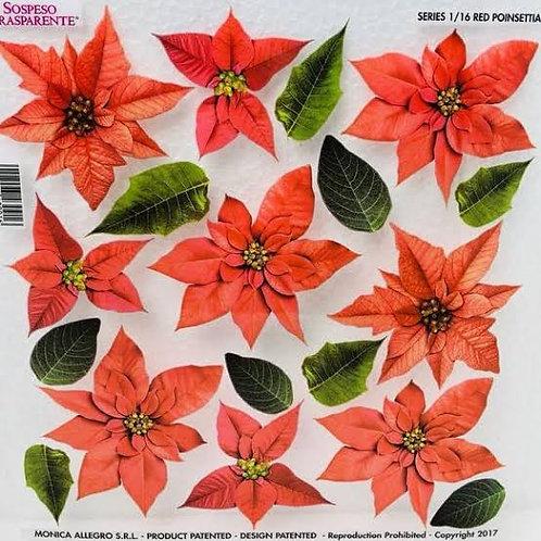 Sospeso Trasparente - Printed Film Red Poinsettia