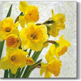 Yellow Tulips - Decoupage Napkin