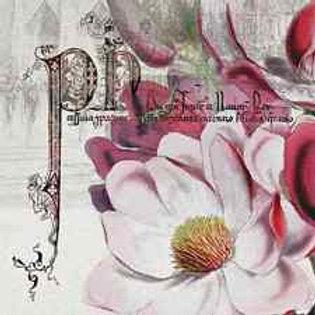 Floral Paradise - Decoupage Napkin