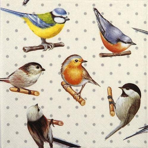 Birds & Dots - Decoupage Napkin