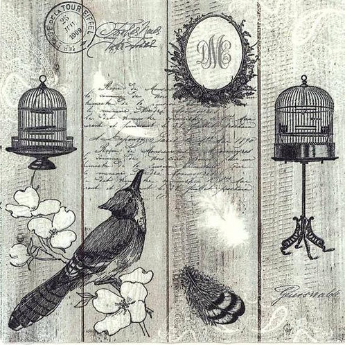 Vintage Birds and Cagers - Decoupage Napkin