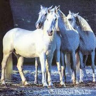 White Horses- Decoupage Napkin