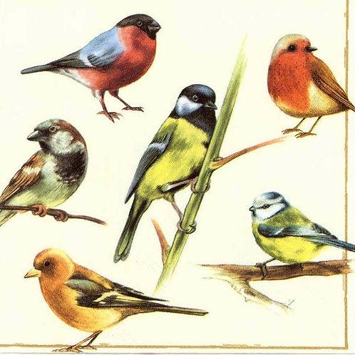 Multiple Birds- Decoupage Napkin