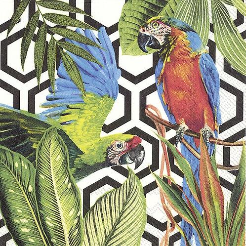 Trpical Parrots Black - Decoupage Napkin