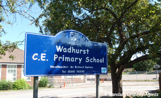WADHURST PRIMARY SCHOOL