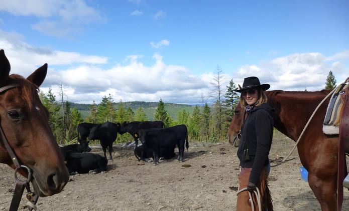 stage ranch du Montana (USA)