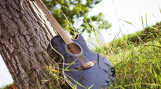 black-acoustic-cutaway-guitar-on-tree-225230_edited.jpg