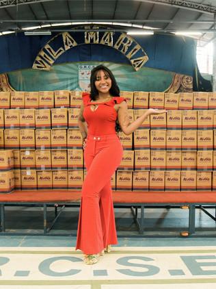 Familias que tiveram renda comprometida pelo cancelamento do carnaval recebem cestas basicas