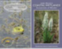 Coastal Wetlands - Ecosystems of Wonder.