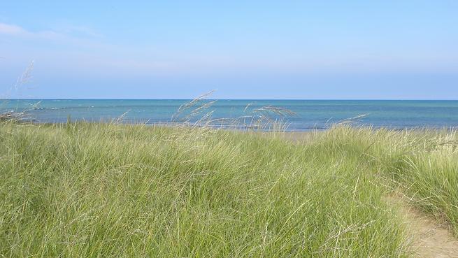 Dune.png