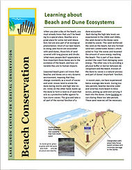 beach and dune ecosystems.JPG