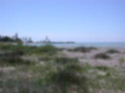 Point Clark - development of embryo dune