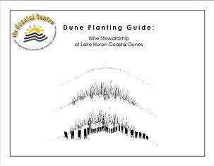 Dune Planting Guide.JPG