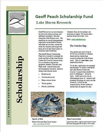 Scholarship Screen Grab.JPG