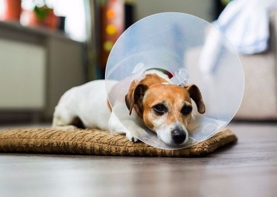 Post Surgery Energetic Healing