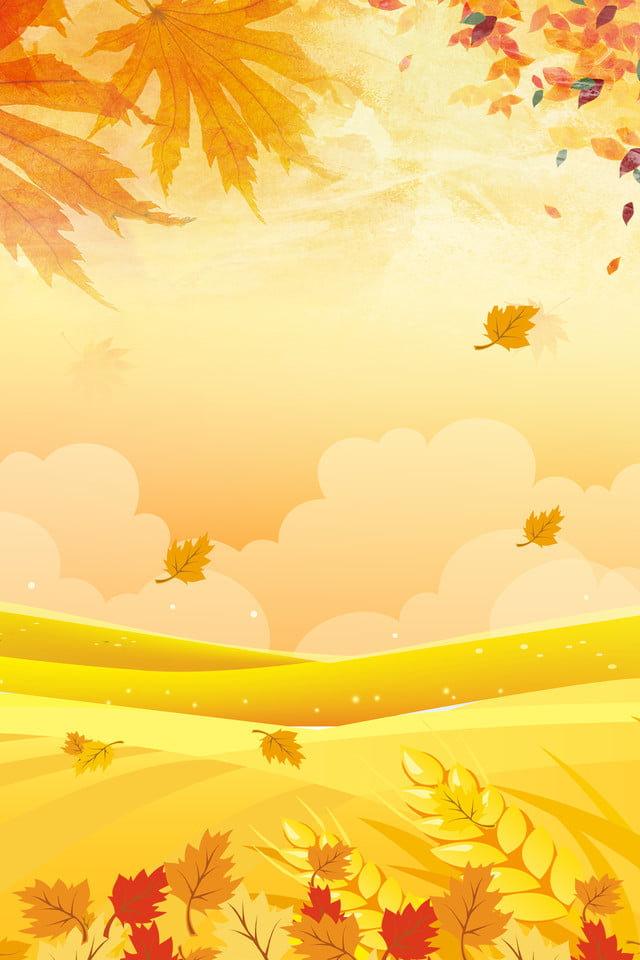 pngtree-fall-fallen-leaves-ginkgo-september-image_35638.jpg