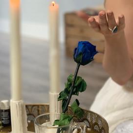 Sarah Tamar and the Blue Rose