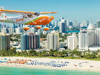 Why You Should Vacation to Miami