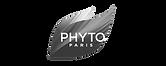 Logo phyto