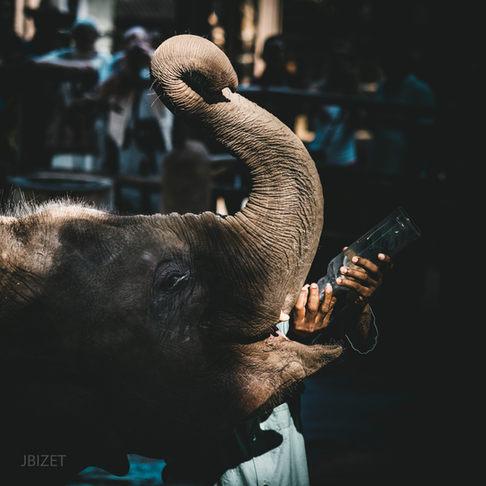 Sri-lanka-1.jpg