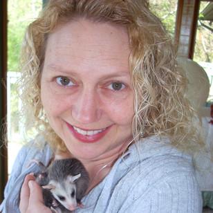 mandpossums4812b.106210338_large.jpg