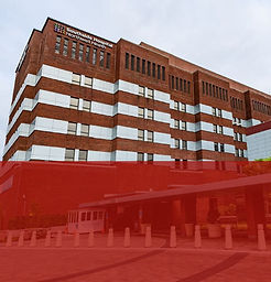 Hoispitals_and_Rotations_red-03.jpg