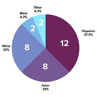 Program chart .jpg