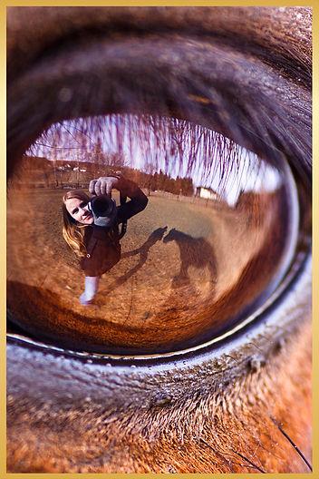 miduna fotografie, michaela jeitler, fotograf eppertshausen, fotostudio eppertshausen