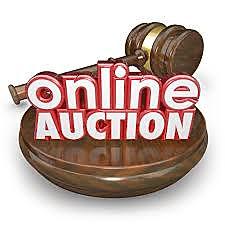 online bid pic.jpg