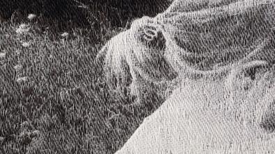Held, Poppy Detail 006