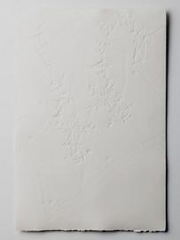 Folds, Embossed Print