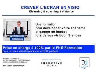 CREVER L'ÉCRAN EN VISIO - Formation prise en charge à 100% par le FNE-Formation pour tous les sa