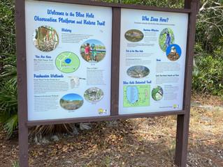 Florida Keys: Visit to the Blue Hole - Big Pine Key