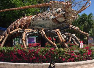 5 Travel Tips for the Florida Keys