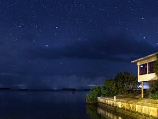 101 Travel Bits: Everglades National Park - Flamingo