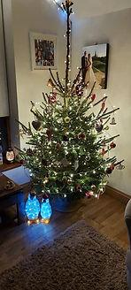 tree 3 101220.JPG