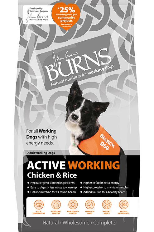 Burns Active Working Chicken 12 Kg