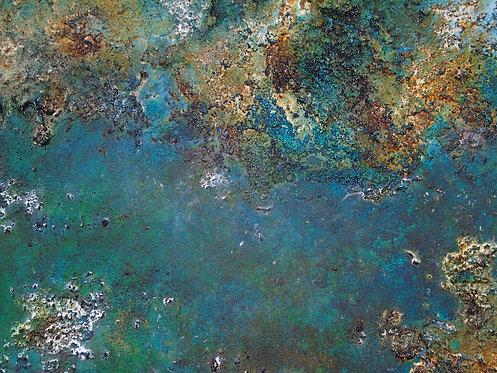 Recifes de Corais I/Coral Reef I