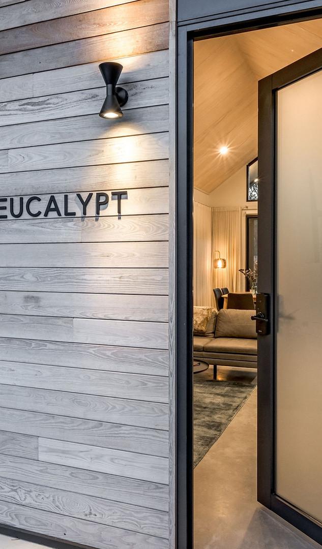 MeloStudios_Eucalypt_NEWEDITS_Externals-
